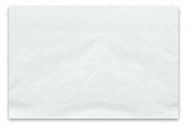 Ścianka  2 szt. do pawilonu 3x3, biała, 295215 cm