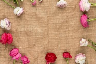 Fototapeta na ścianę rozsypane kwiaty fp 3870