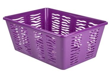 Branq zebra 4 koszyk 36.5 x 25.5 x 14.5 cm śliwkowy