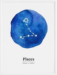 Plakat Pisces 30 x 40 cm