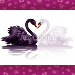 Naklejka samoprzylepna dwa pełne wdzięku łabędzie: czarne i białe serce
