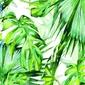 Tropikalne liście - plakat wymiar do wyboru: 42x59,4 cm