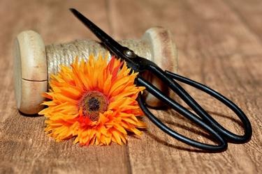 Fototapeta kwiat, gerbera 328