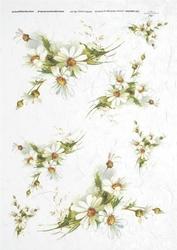 Papier ryżowy ITD A4 R247 nagietki kwiaty