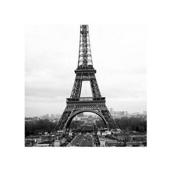 Paris - eiffel tower - reprodukcja