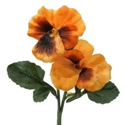 Bratek do florystyki - pomarańczowy - pomarańczowy