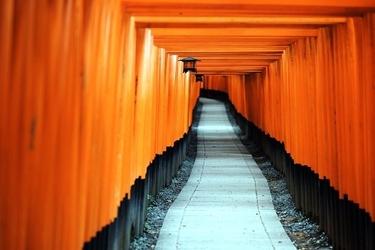 Obraz japonia fushimi inari taisha ścieżka fp 2224 p