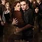 Zmierzch New Moon Cullens - plakat