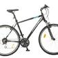 Rower crossowy wheeler cross 6.2 man 2018