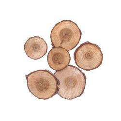 Plastry drewna 3-4 cm 6 szt.