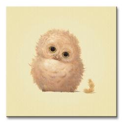 Owl  - obraz na płótnie