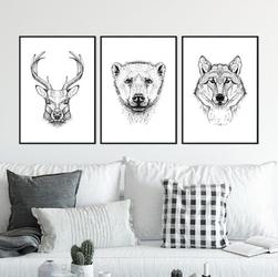 Zestaw trzech plakatów - wild company , wymiary - 50cm x 70cm 3 sztuki, kolor ramki - biały