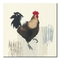 Cockerel - obraz na płótnie