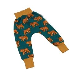 spodnie softshell rysie