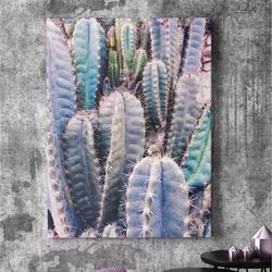 Obraz na płótnie - cactus rainbow , wymiary - 80cm x 120cm