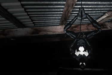 Black spider-man - plakat wymiar do wyboru: 100x70 cm