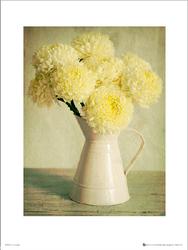 Dzban Kwiatów - plakat premium
