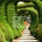 Fototapeta juniper sculpture garden