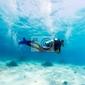 Plakat sylwetka scuba diver w pobliżu dna morskiego