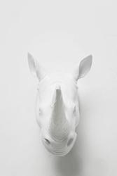 KARE Design :: Dekoracyjna głowa nosorożca
