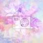 Fototapeta piękna, delikatna, artystyczne tło z wiosennych kwiatów