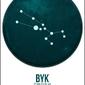 Znak zodiaku, byk - plakat wymiar do wyboru: 40x50 cm