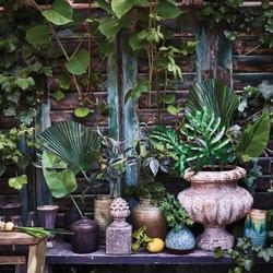 Urban nature culture :: sztuczna roślina dekoracyjna kalia zielona