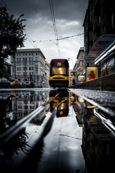 Tramwaj - plakat premium Wymiar do wyboru: 50x70 cm