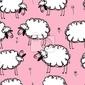 Fototapeta funny owce na łące, bez szwu do projektowania