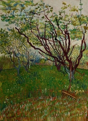 The flowering orchard, vincent van gogh - plakat wymiar do wyboru: 21x29,7 cm