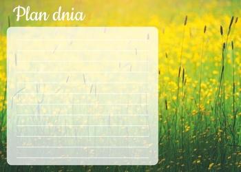 Plan dnia tablica suchościeralna trawy 364