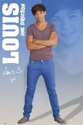 One direction louis 2012 - plakat