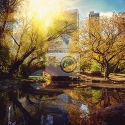 Fototapeta central park staw i most. nowy jork, usa.