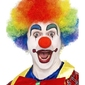 Peruka klauna - kolorowa