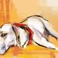 Labrador - plakat wymiar do wyboru: 40x30 cm