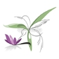 Naklejka samoprzylepna koliber leci wokół różowy kwiat