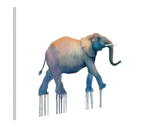 Elephant walk - obraz na płótnie