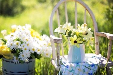 Fototapeta krzesło stojące na łące z kwiatami fp 68