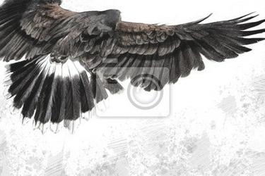 Plakat nisko latający orzeł ilustracji na tle artystycznym, wykonane dowcip
