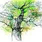 Naklejka pnia drzewa