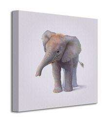 Elephant - obraz na płótnie