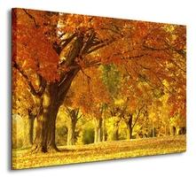 Jesienny kajobraz - obraz na płótnie
