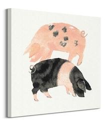 Świnki - obraz na płótnie
