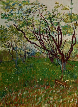 The flowering orchard, vincent van gogh - plakat wymiar do wyboru: 70x100 cm