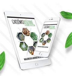 Gnojówki roślinne 14 łatwych przepisów – e-book