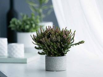 Osłonka na doniczkę dekoracyjna porcelanowa altom design dekoracja granit 6,5 cm