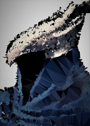 Polyamory - artorias, dark souls - plakat wymiar do wyboru: 50x70 cm