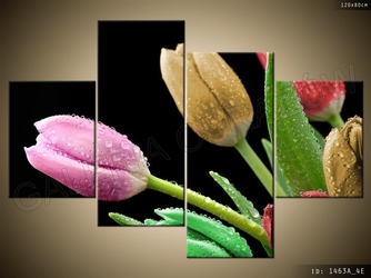 Kolorowy bukiet tulipanów