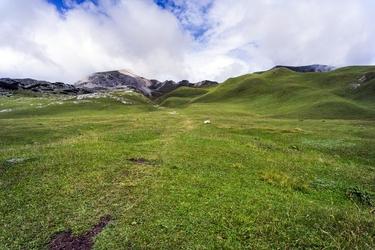 Fototapeta łąka w wysokich partiach górskich fp 1765