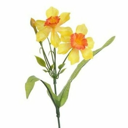 Żonkil z łodygą do florystyki 21 cm - żółto-pomarańczowy - żółto-pomarańczowe